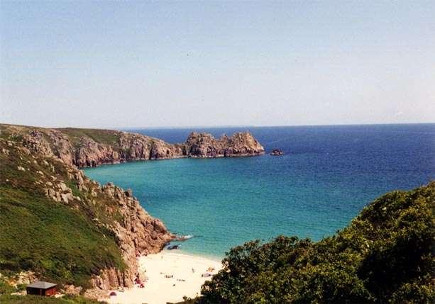 Dogs On Cornish Beaches