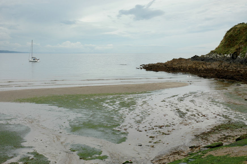Dog Friendly Beaches Perranporth