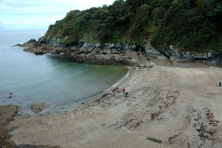 Readymoney Cove